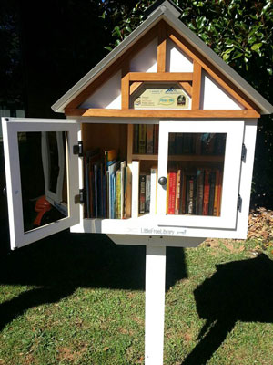 Little Library at Franklin, NC Town Hall